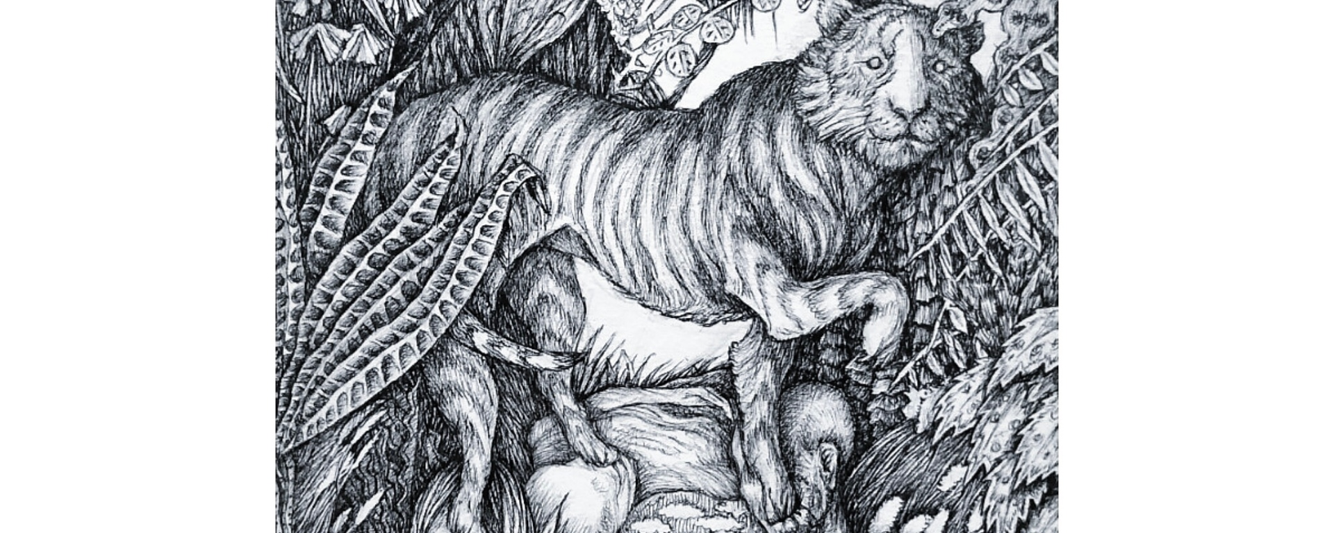 A drawing showing two naked figures lying in bed with a tiger stepping above their heads